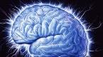 Testiraj svoj mozak