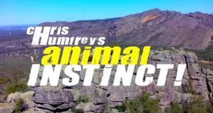Ĺ˝ivotinjski instinkt Krisa Hamfrija